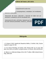 4-Metabolismo del calcio.pdf