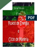 microsoft-powerpoint-fluxo-de-energia-e-ciclos-de-materia-modo-de-compatibilidade.pdf