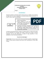 326994588-Ciclo-hidrologico.pdf
