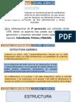 CEFALOSPORINAS (2)