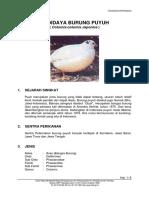 burung_puyuh.pdf