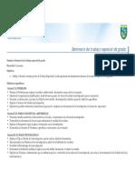 Programa Seminario TEG
