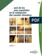 Felipe Bravo_El Papel de los Bosques Españoles en la Mitigación del Cambio Climático.pdf
