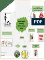Socializacion Armonica de La Produccion y Distribucion de Bienes y Servicios