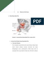 BAB II plg br.pdf
