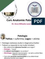 Curs 1-4 (1).pptx