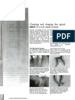 Cleaning and Shaping the Apical Third[1]