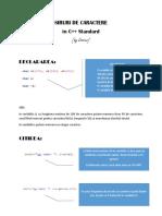 siruri de caractere in C++ Standard.pdf