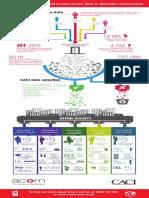 Acorn Infographic