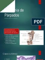Anatomía de Párpados