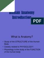 04 Anatomy Introduction