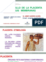 Placenta 2018