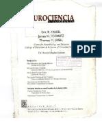 kandel completo.pdf