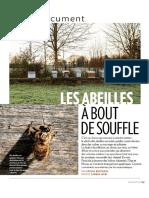 Abeilles Biodiversite Exctinction de Masse Agriculture Productiviste-Paris Match - 22 Au 28 Mars 2018