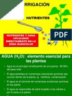 Fertirriego y Nutrición Mineral de Plantas