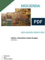MOLIENDA pdf