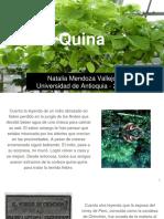Unidad 3 Quina - Natalia Mendoza Vallejo