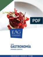 Gastronomia2018 Prog Academico