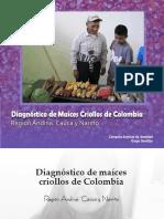 Región Cauca y Nariño.pdf