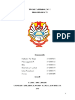 TUGAS FARMAKOLOGI I_TROVAFLOXACIN_KELAS B_KEL 5.pdf