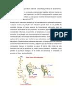 Pregunta 5 Lab Bioquimica