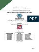 SEM-4 GCSR Company Report