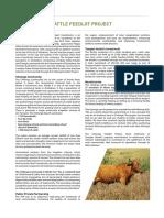cattle-feedlot-project.pdf