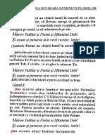 SEDELNE LA DENIA DIN SEARA DUMINICII FLORIILOR.doc