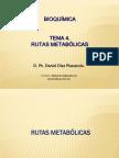 RUTAS-METABOLICAS.pdf