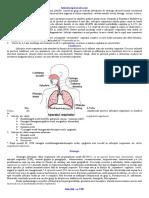 Infecţii Respiratorii Acute