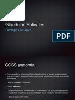 Clase 10. Glándulas Salivales 1
