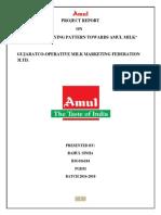 Amul Final Report