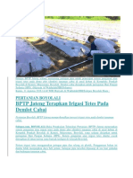 BPTP Jateng Terapkan Irigasi Tetes Pada Demlot Cabai