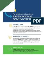 Resumo sobre a BNCC.pdf