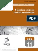 iniciação cientifica