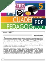 Cuaderno Pedagógico - El Petro 13-03-2018