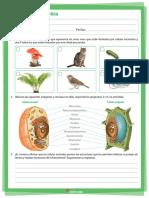 TALLER+PLATAFORMA+6 Biologia