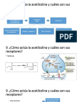 9.ACh y receptores.pptx