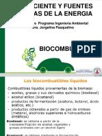 Biomasa Biocombustibles