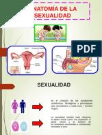 Anatomia de Las Exualidad - Trabajo Liliam