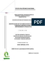 Identificación de Factores de Éxito en Pequeñas y Medianas Empresas Desde El Emprendimiento Productivo