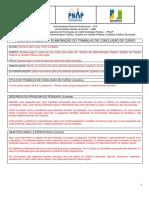 Formulário Para Preparação Do Plano de Trabalho