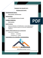 Merco Andina