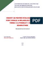 Rezumat ILIE MARIANA.pdf
