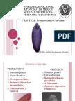 Platelmintos1 PDF