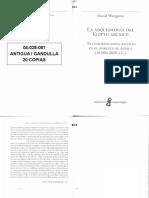 04028081   WENGROW - La arqueología del Egipto arcaico CAP 2 Y 3.pdf