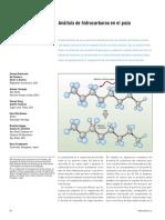 Análisis de hidrocarburos en el pozo - Schlumberger.pdf