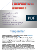sistemrespiratori-120311122105-phpapp01