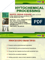 Phytochemical Processing Presentation