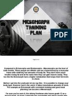 Mesomorph+Training+Plan